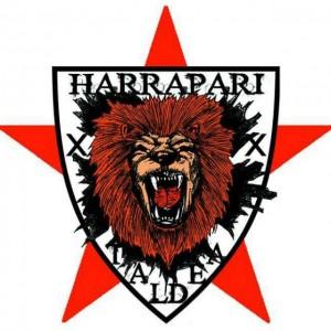 harrapari-taldea-zorrotzaa